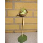 Grøn fugl i rede