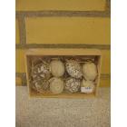 Æg i kasse