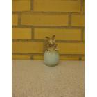 Kanin i æg ikke se